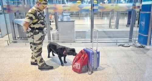 అరబిందో గురుదేవుల జయంత్యోత్సవాలు