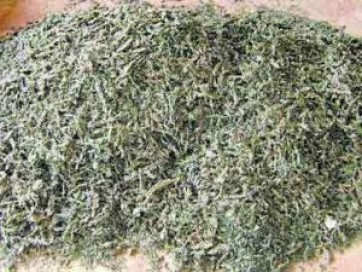 ఆర్టీసి కాంప్లెక్స్ వద్ద 66 కేజీల గంజాయి పట్టివేత