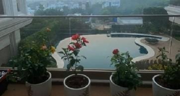 అలవోకగా నా కెమెరా కంటికి చిక్కి అంతర్జాలానికి తన అందం తెలిపింది : చిరంజీవి
