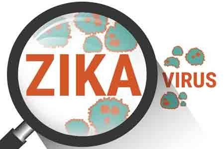 Spanish scientists find potential anti-Zika drug