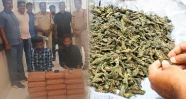 మియాపూర్ లో గంజాయి పట్టివేత..  ఇద్దరి అరెస్ట్